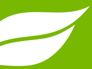 Anderson Pest Solutions Branding